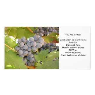 Grape, Wine Celebration Invitation