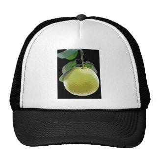 Grapefruit fruit tree photo by E.L.D. Trucker Hats