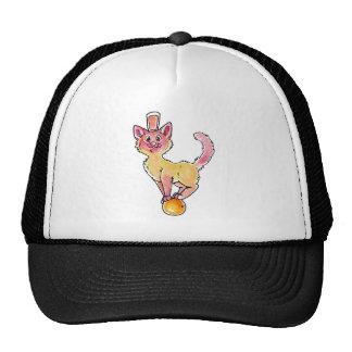 Grapefruit Juice Kitty Mesh Hats