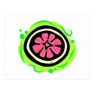 Grapefruit Pink Postcard