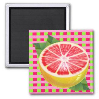 Grapefruit Plaid Refrigerator Magnet