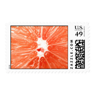 Grapefruit Stamp
