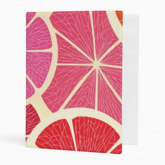 Grapefruit vintage background mini binder