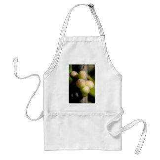 Grapes Adult Apron