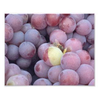 Grapes and bees quimerismo photo print
