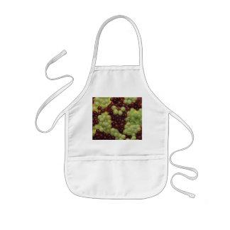 Grapes Apron