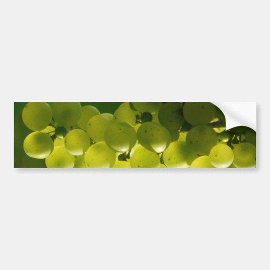 Grapes Bumper Sticker
