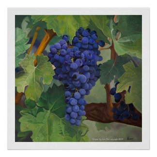 """""""Grapes"""" by Tom Norr Poster"""
