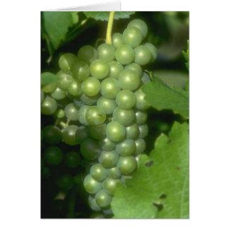 Grapes Card