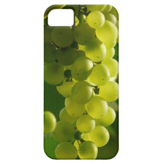 Grapes iPhone 5 Cover