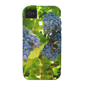 Grapes iPhone 4/4S Cover