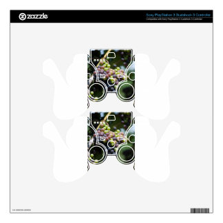 Grapes Decal For PS3 Controller