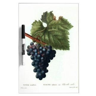 Grapes Dry Erase Board