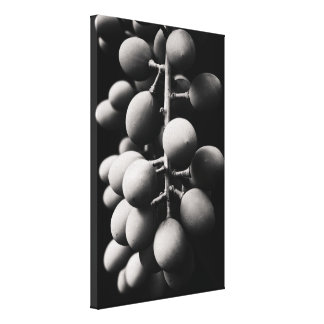 grapes for a sour day canvas print