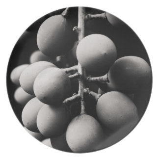 grapes for a sour day melamine plate