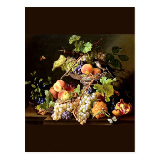 Grapes Fruit Bird Still Life painting Postcard
