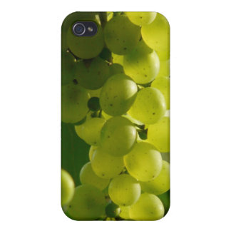 Grapes Cover For iPhone 4