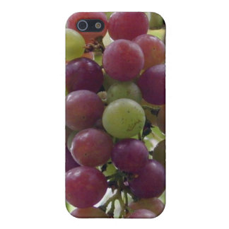 Grapes iPhone 5 Case