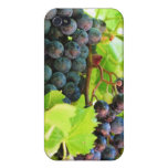 Grapes iPhone Case iPhone 4 Covers