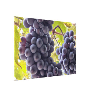Grapes MF Gallery Wrap Canvas