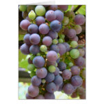 Grapes Notecard Stationery Note Card