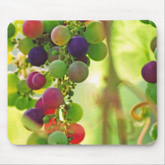 Grapes of Many Colors Mousepad