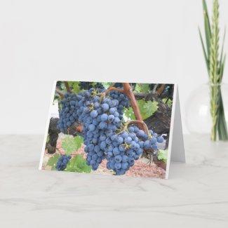Grapes of Napa Valley card