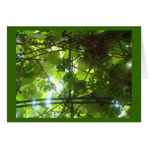 Grapes of Patience w Border Greeting Card