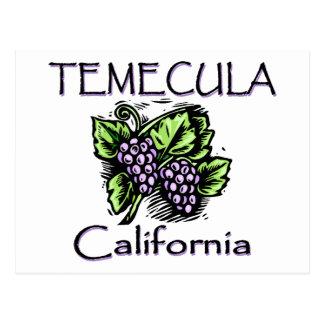 Grapes of Temecula Postcard