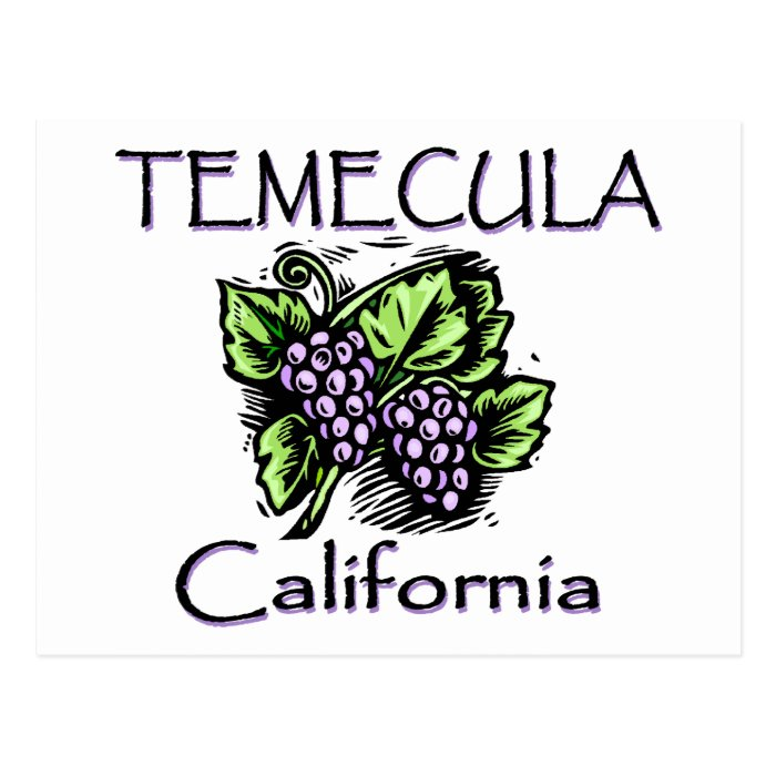 Grapes of Temecula Postcard