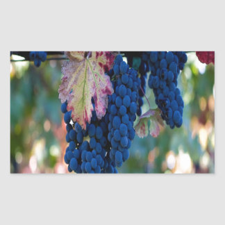 Grapes on a Vine Rectangle Stickers