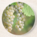 Grapes on the Vine coasters coaster