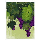 Grapes on the Vine Postcard