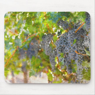 Grapes on the Vine ready to make Wine Mouse Pad