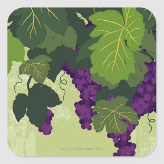 Grapes on the Vine Square Stickers