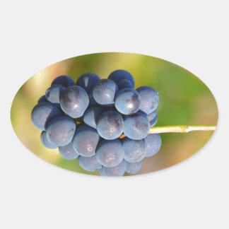 Grapes Oval Sticker