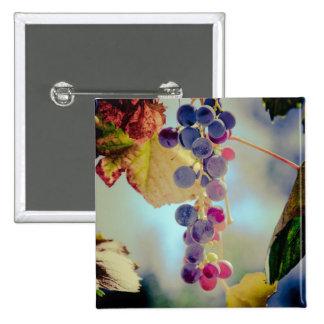 Grapes Pins