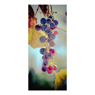 Grapes Rack Card
