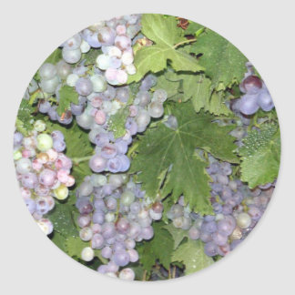 Grapes Round Stickers