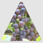 Grapes Stickers