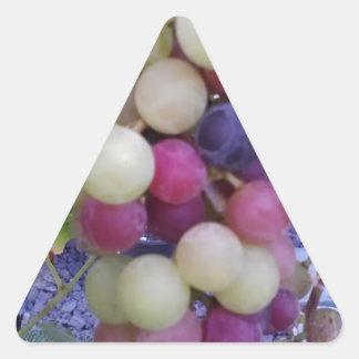 Grapes Triangle Sticker