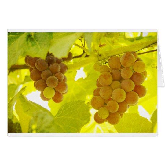 Grapes Vine Fine Art Card