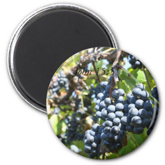 Grapes Vineyard John 15:5 Magnet