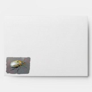 Grapevine Beetle (Pelidnota punctata)6Shape Envelope