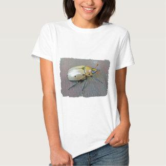 Grapevine Beetle (Pelidnota punctata) Series Tee Shirt