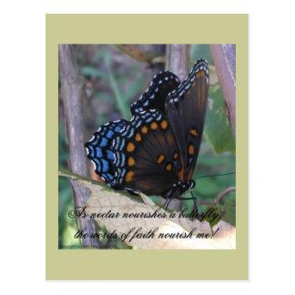 Grapevine Butterfly w/ Verse Postcard