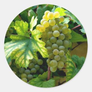 Grapevine Classic Round Sticker