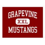 Grapevine - Mustangs - High - Grapevine Texas Post Cards
