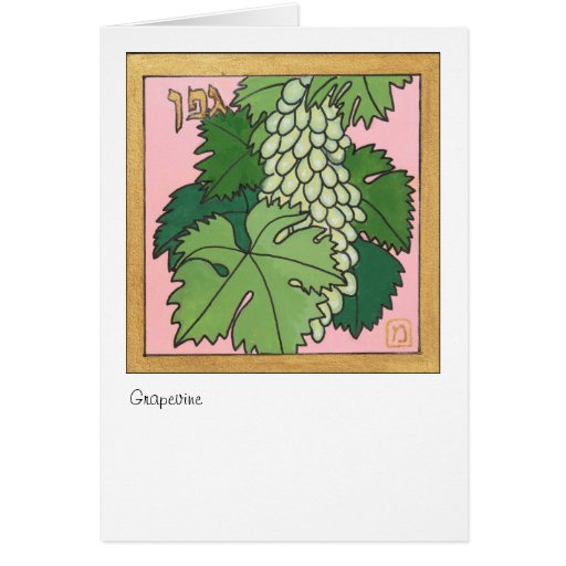 Grapevine, one of the seven species of Israel Greeting Cards