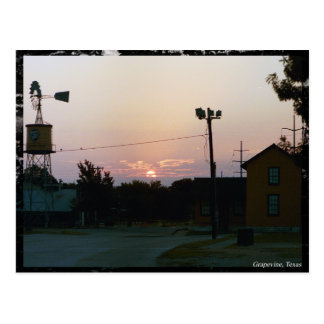 Grapevine Sunrise Postcard